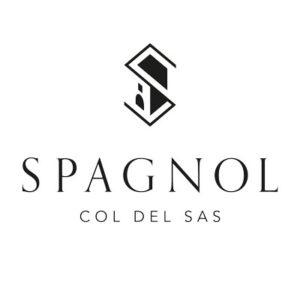 loghi-partner-spagnol